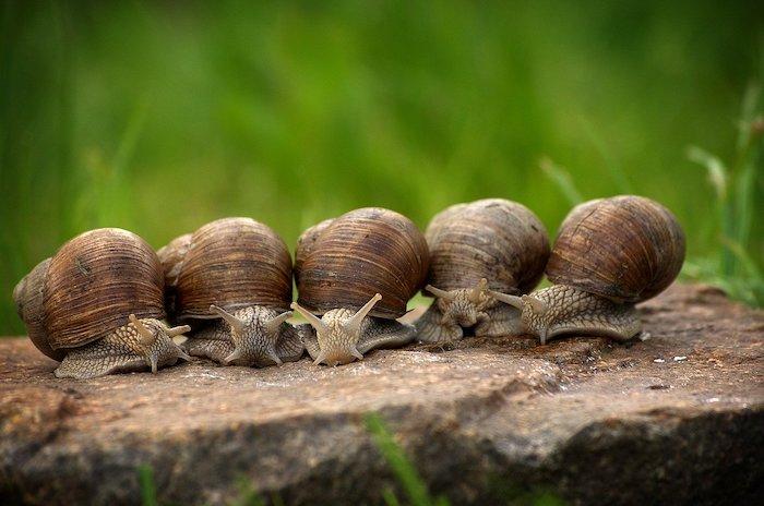 15 Astuces Simples Pour Ralentir Sa Vie Sans Devenir Un Escargot