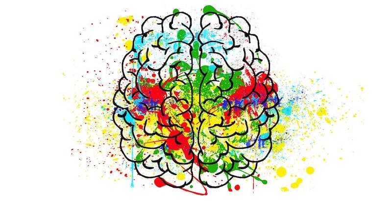 5 Études Scientifiques Pour Développer La Motivation