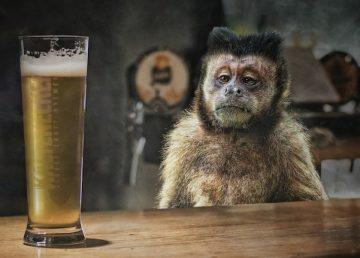 Comment Arrêter l'Alcool (Et Autres Addictions) Par Soi-même
